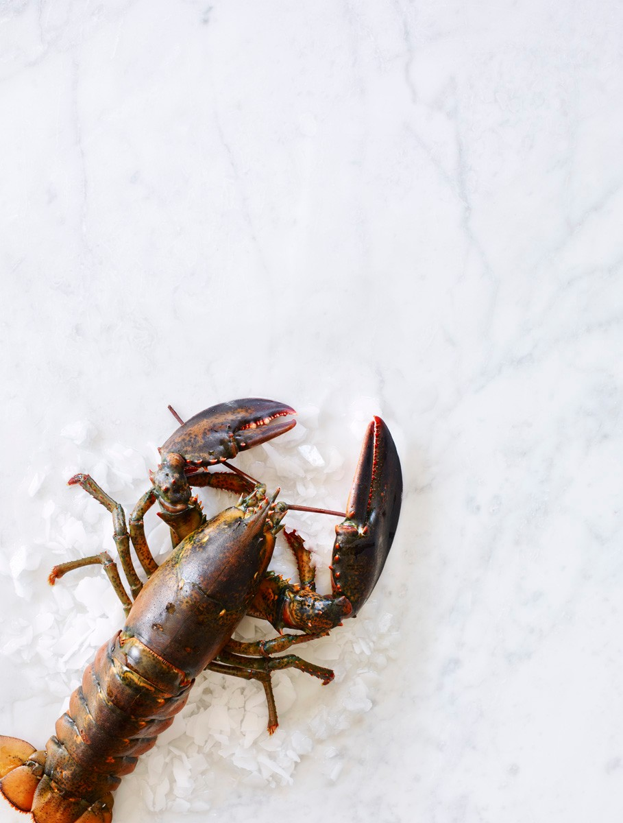lobster_from_cape_seafood
