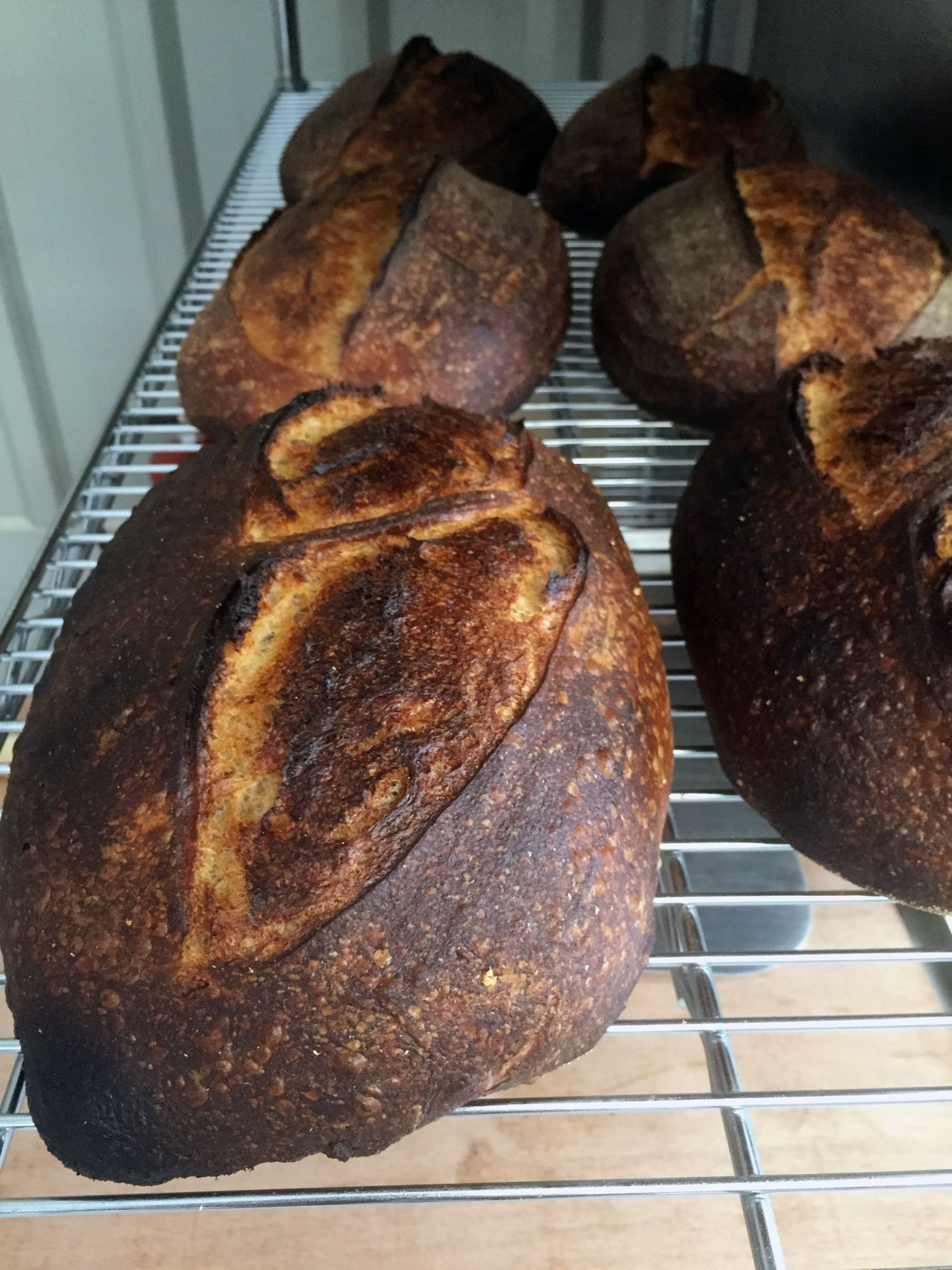 20-rye-sourdough-on-the-cooling-rack
