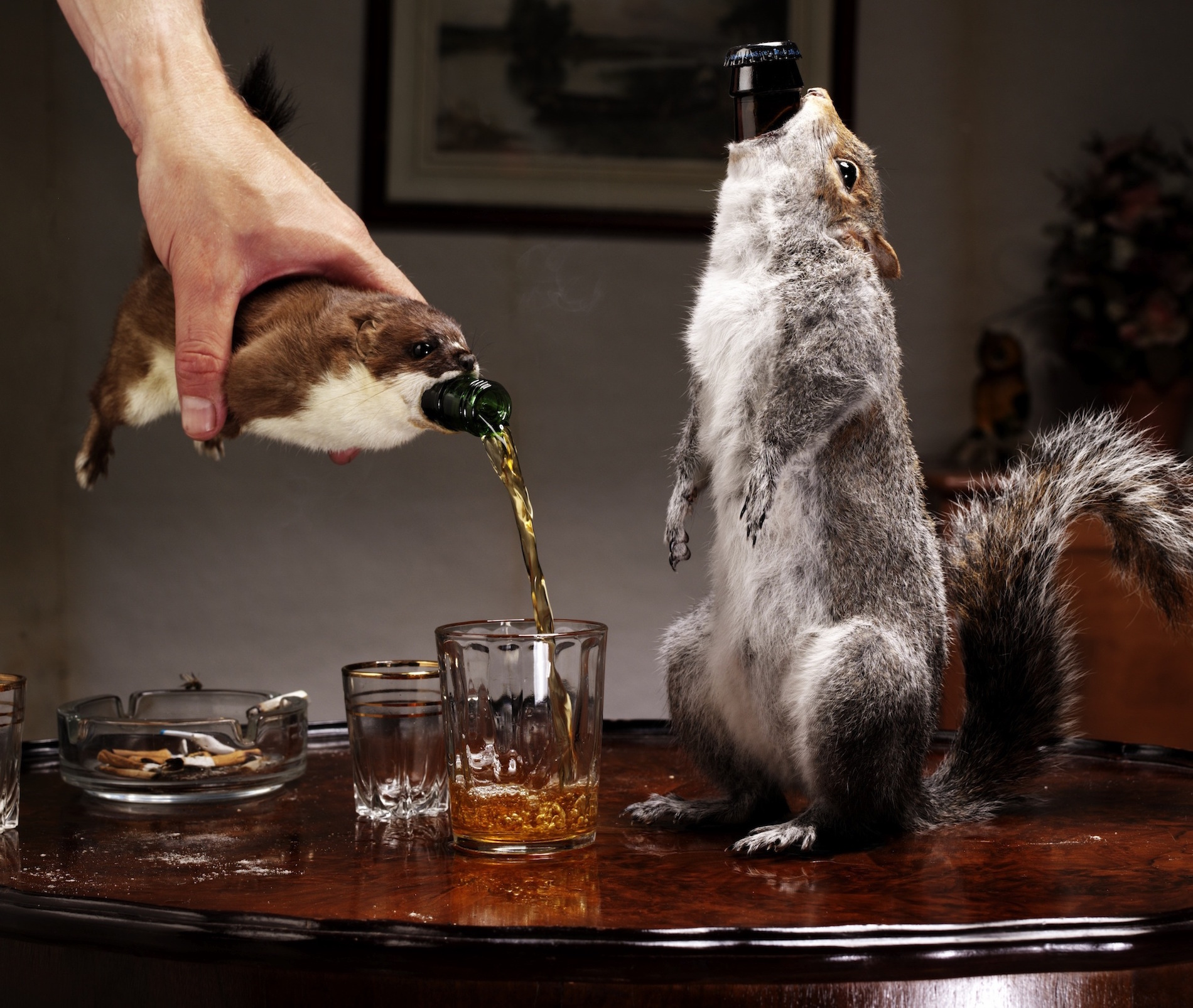 Most Expensive Beer In The World >> This Dead Squirrel Filled With 55 Alcohol Beer Only Costs 20k Vice