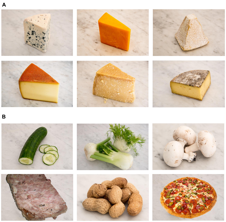cnrs-fromage-recherche-degout