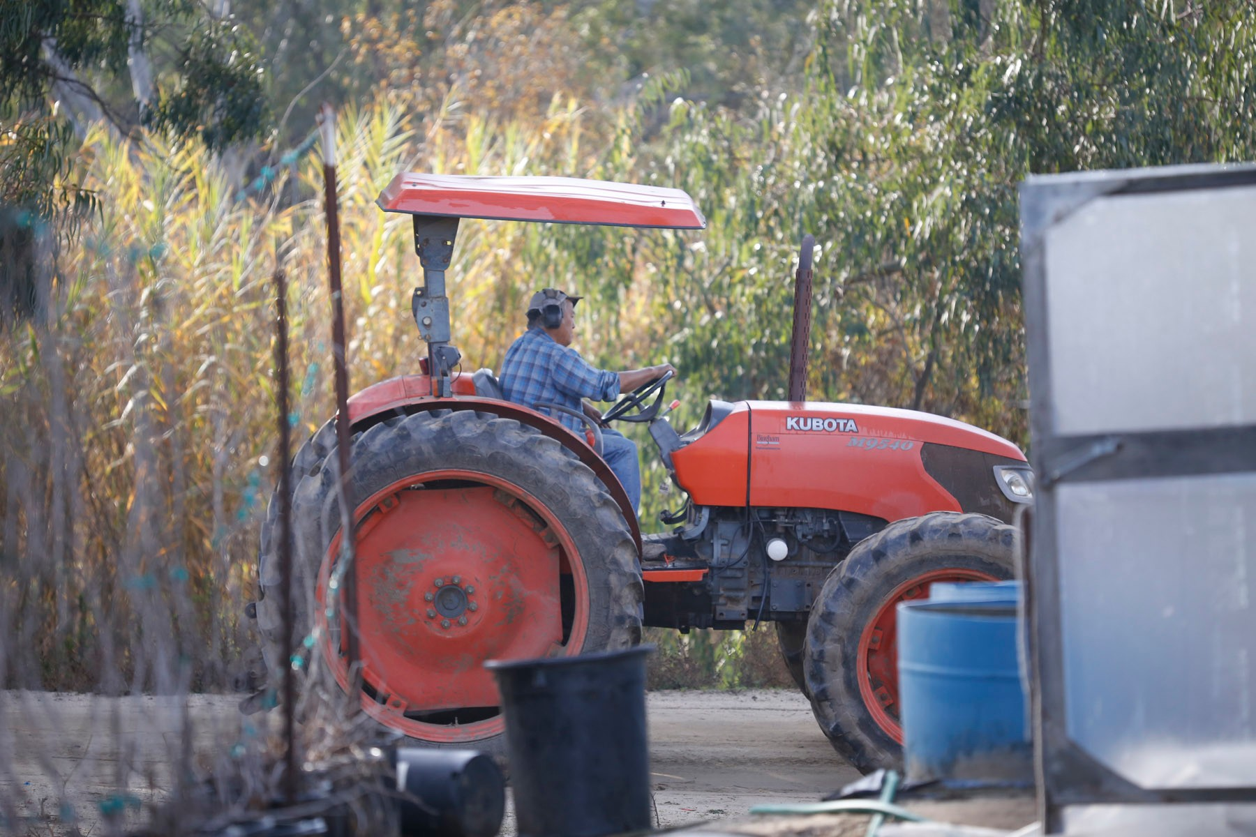 San Diego California, USA, December 13th 2016: | Chino Farms located in Rancho Santa. The farm is recognize and publicize for the high quality produce. Tom Chino driving the tractor towards the fields. | (Alejandro Tamayo)