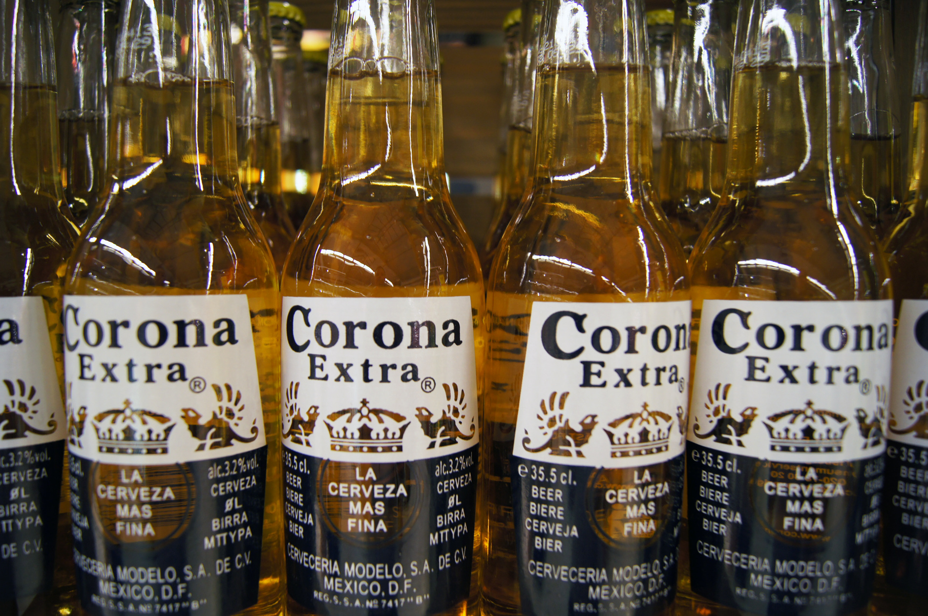 Is there piss in corona
