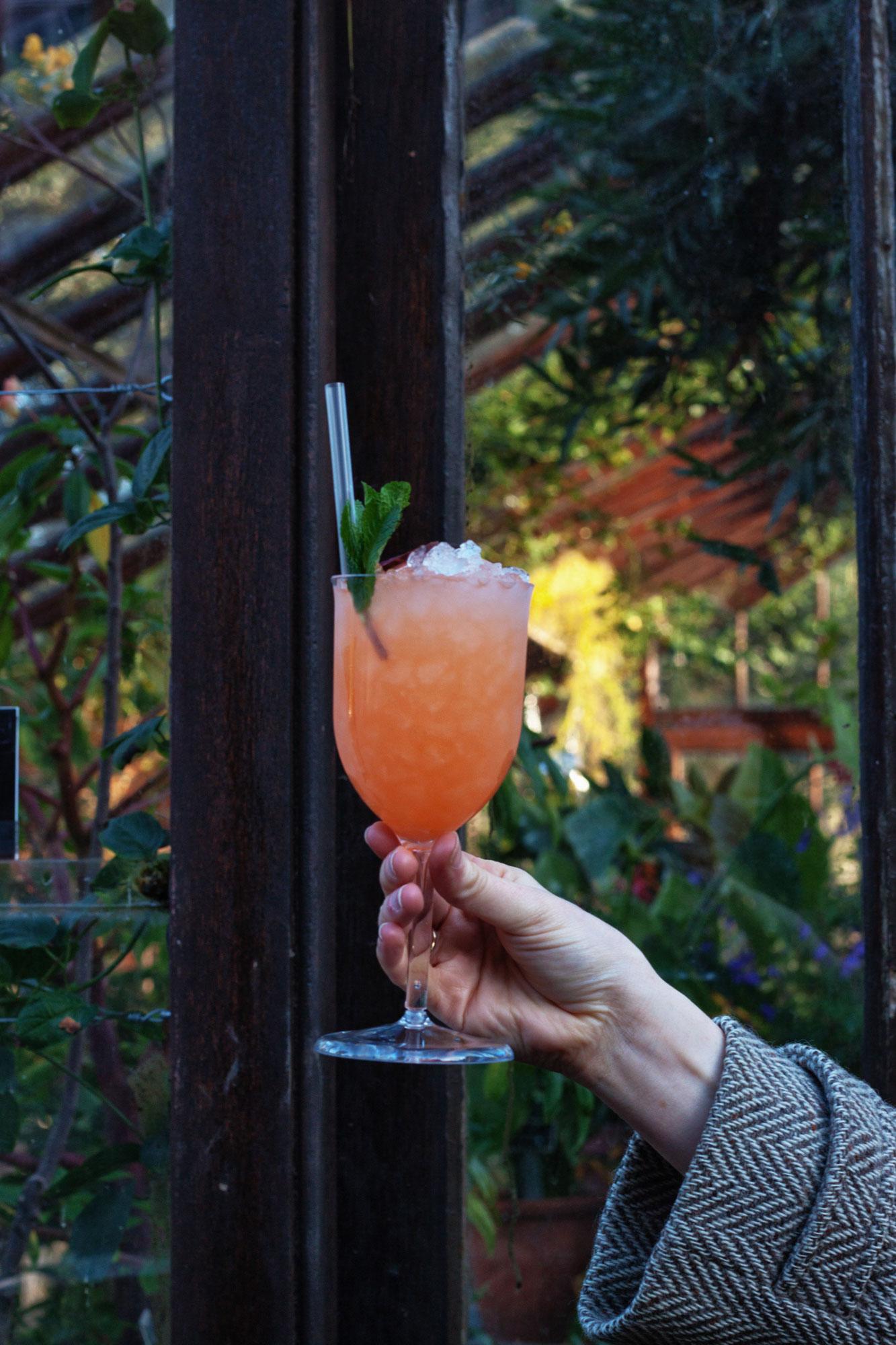 Dandelyan-bar-Tomacco-Mule