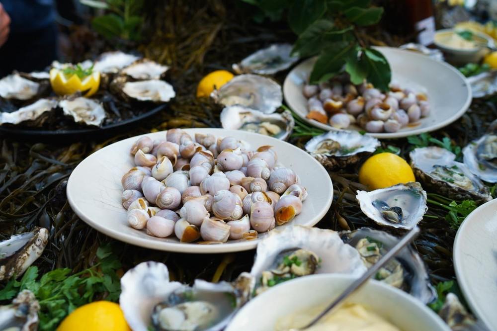 Food On the Edge -Irish Seafood