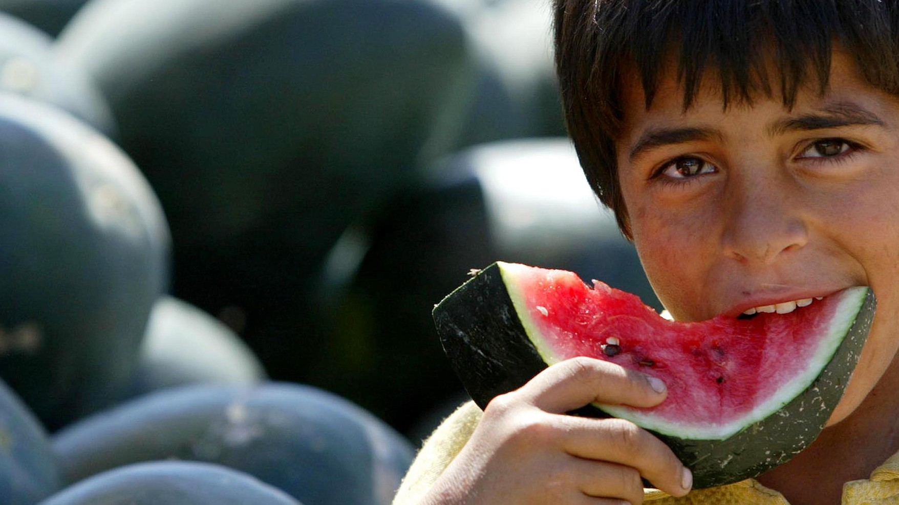 Why Watermelons Are a Symbol of Political Protest for Palestinians