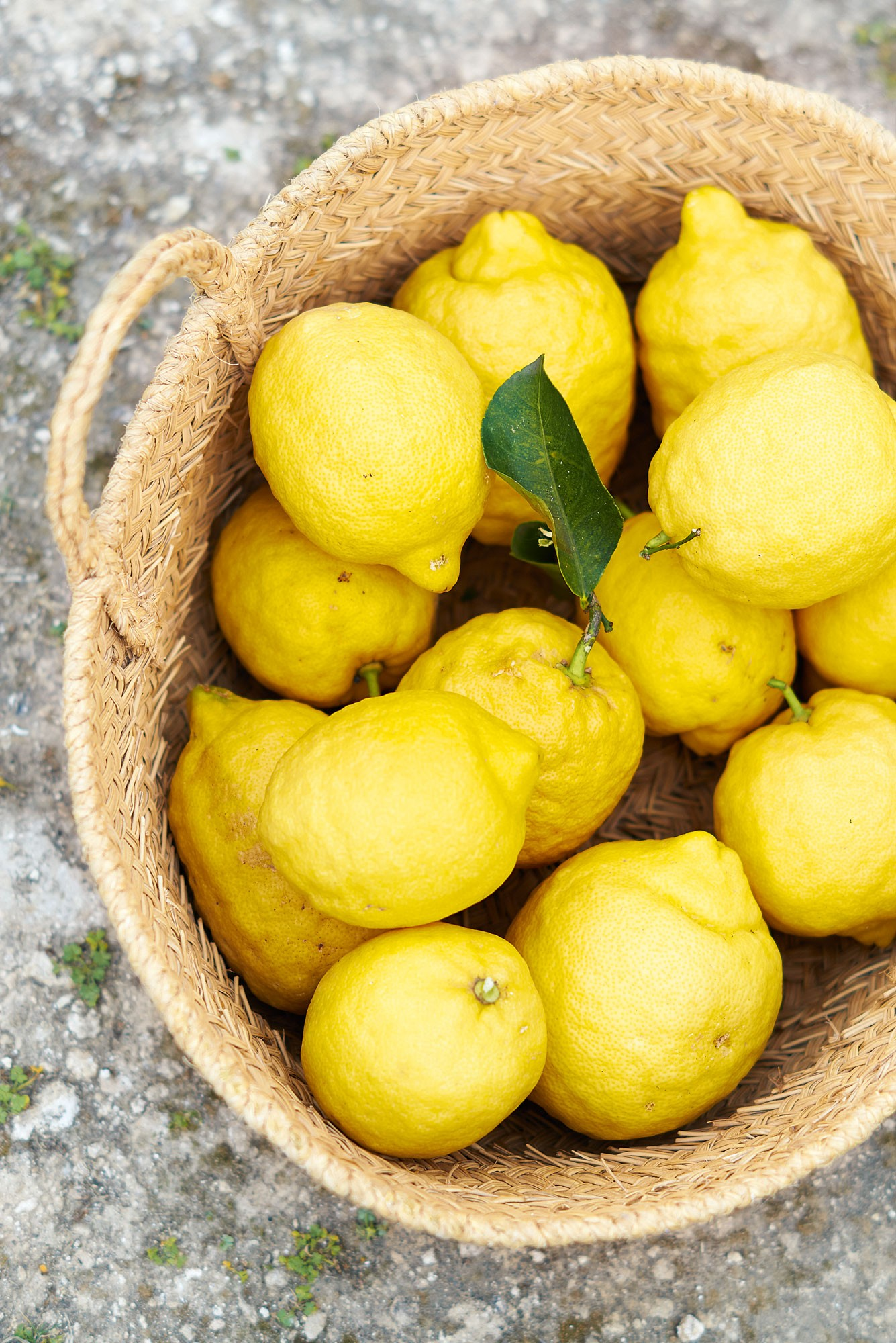 lemons-ibiza-cookbook
