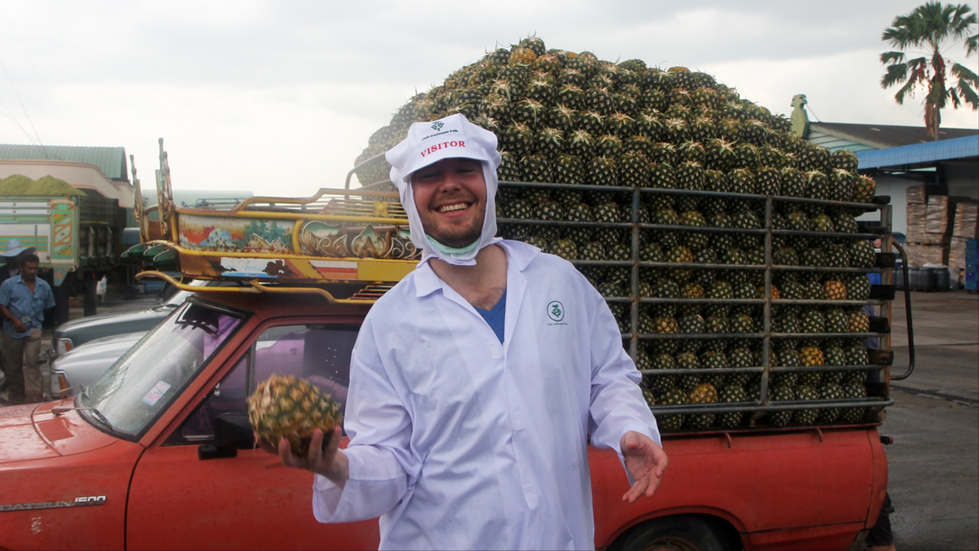 Meet the Netherlands' Biggest Pineapple Obsessive - VICE
