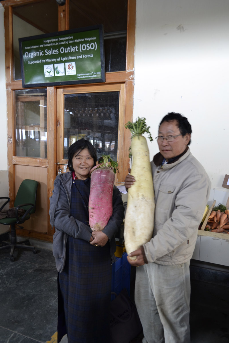 oragnic-radish-6-and-9-kilograms