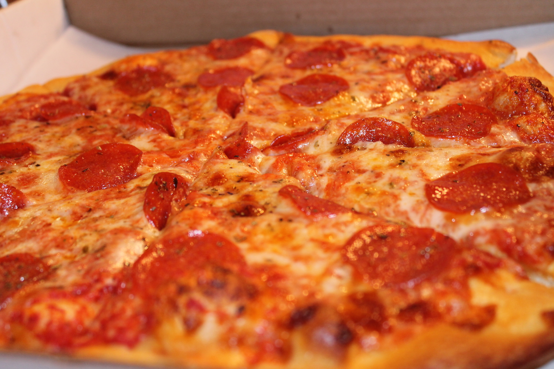 College Kid Swarmed by Cops with Tasers After Falling for Pizza Scam