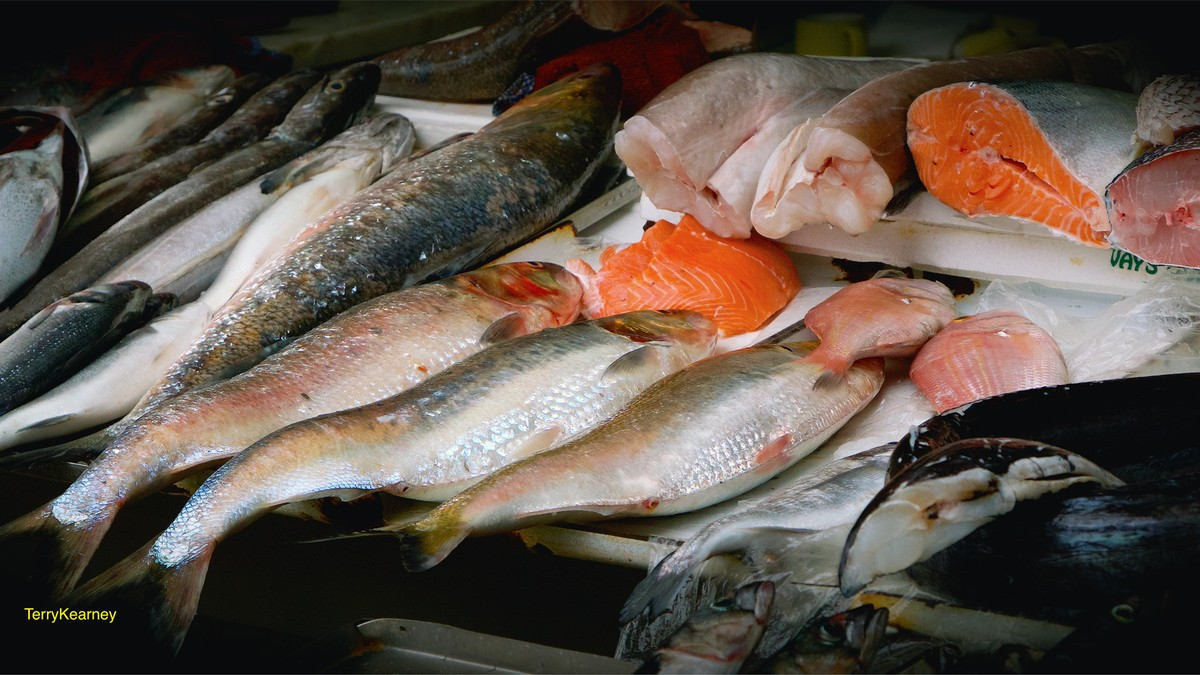 This study says almost all the seafood we eat contains for Fish and seafood