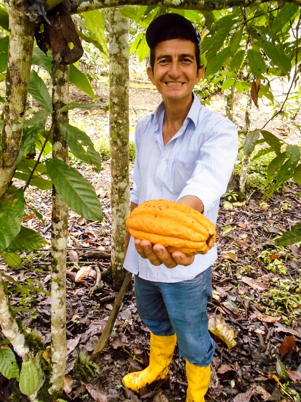Servio Pachard is a fourth-generation cacao grower