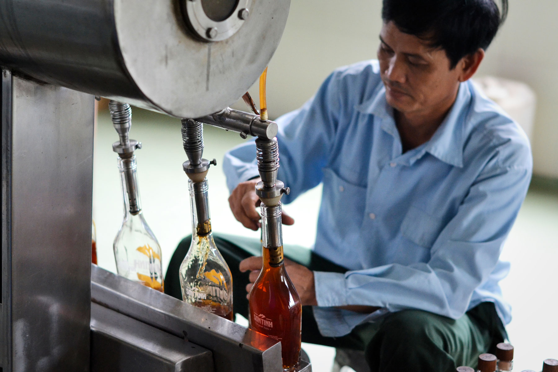 son-tinh-gets-bottled-and-packaged-by-hand