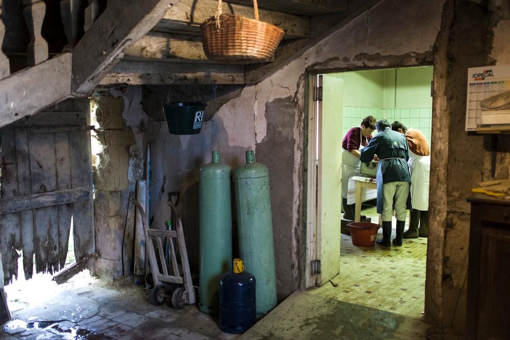 14/01/2014 - France / Aquitaine - Quand le boucher a vide les boyaux de l'animal, les femmes peuvent commencer a les nettoyer avec de l'eau chaude. Ces boyaus serviront pour confectionner les boudins. Le tue-cochon, ou fete du cochon, est une tradition des campagnes francaises, qui correspond a l'abattage, la decoupe et la cuisine de la viande de porc. Autrefois moment important de la vie rural, cette tradition se perd aujourd'hui. Simon Lambert / Haytham Pictures 14/01/2014 - France / Aquitaine - Kill the pig - When the butcher emptied the guts, the women clean them with hot water. They will be used to make the blood sausages with the pork gut casings . Simon Lambert / Haytham Pictures