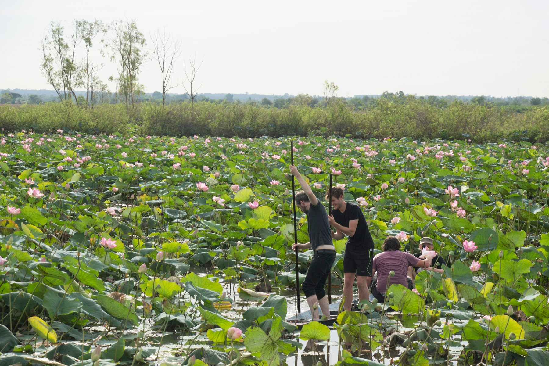 thailand-group-boat-shot-lotus-flowers