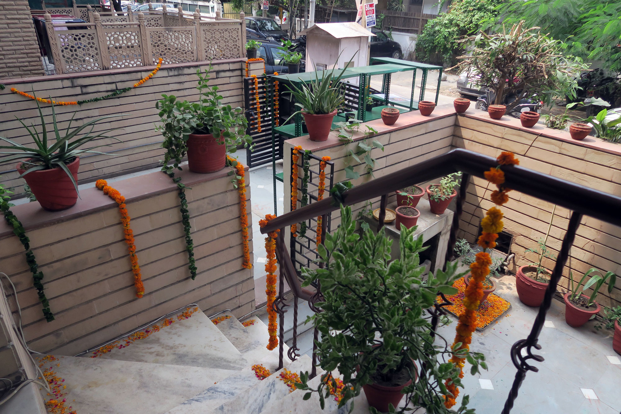 the-living-garden-at-the-new-navdanyas-living-foods-centre