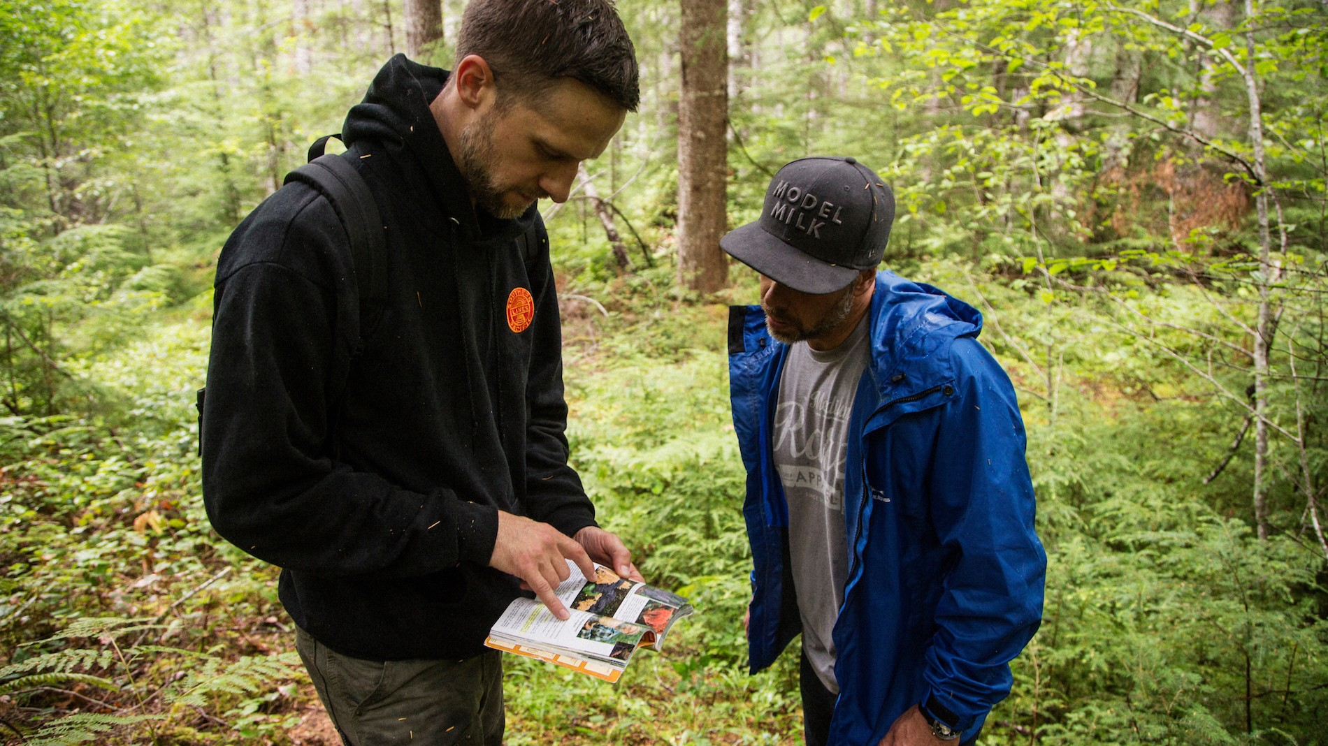 Ryan Courter looks up information about an unusual mushroom that chef Justin Leboe found. Mushrooms in Portland, Oregon. August 2016. Matt Lutton / Boreal Collective for Vice Munchies