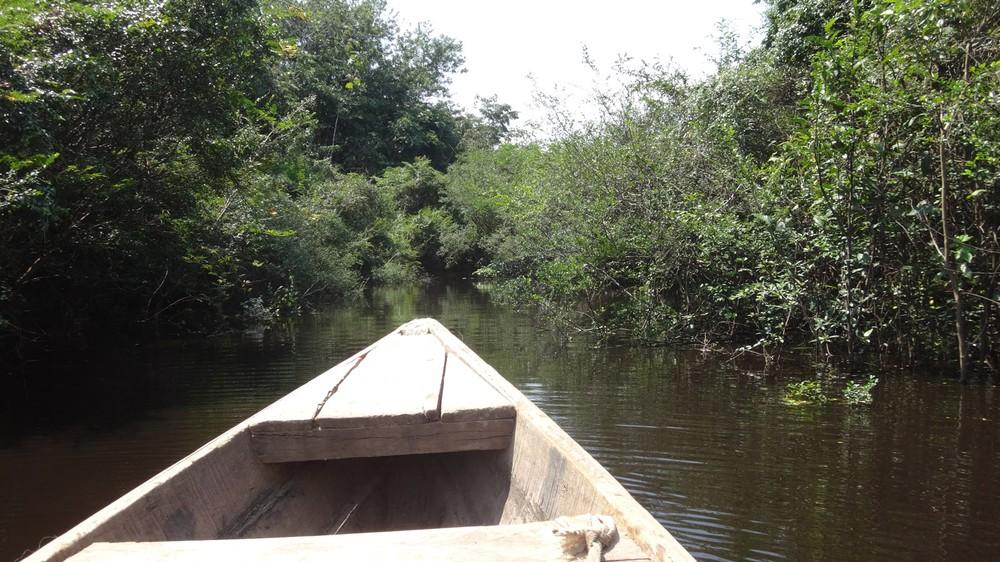 amazontobacco_Iquitos 072