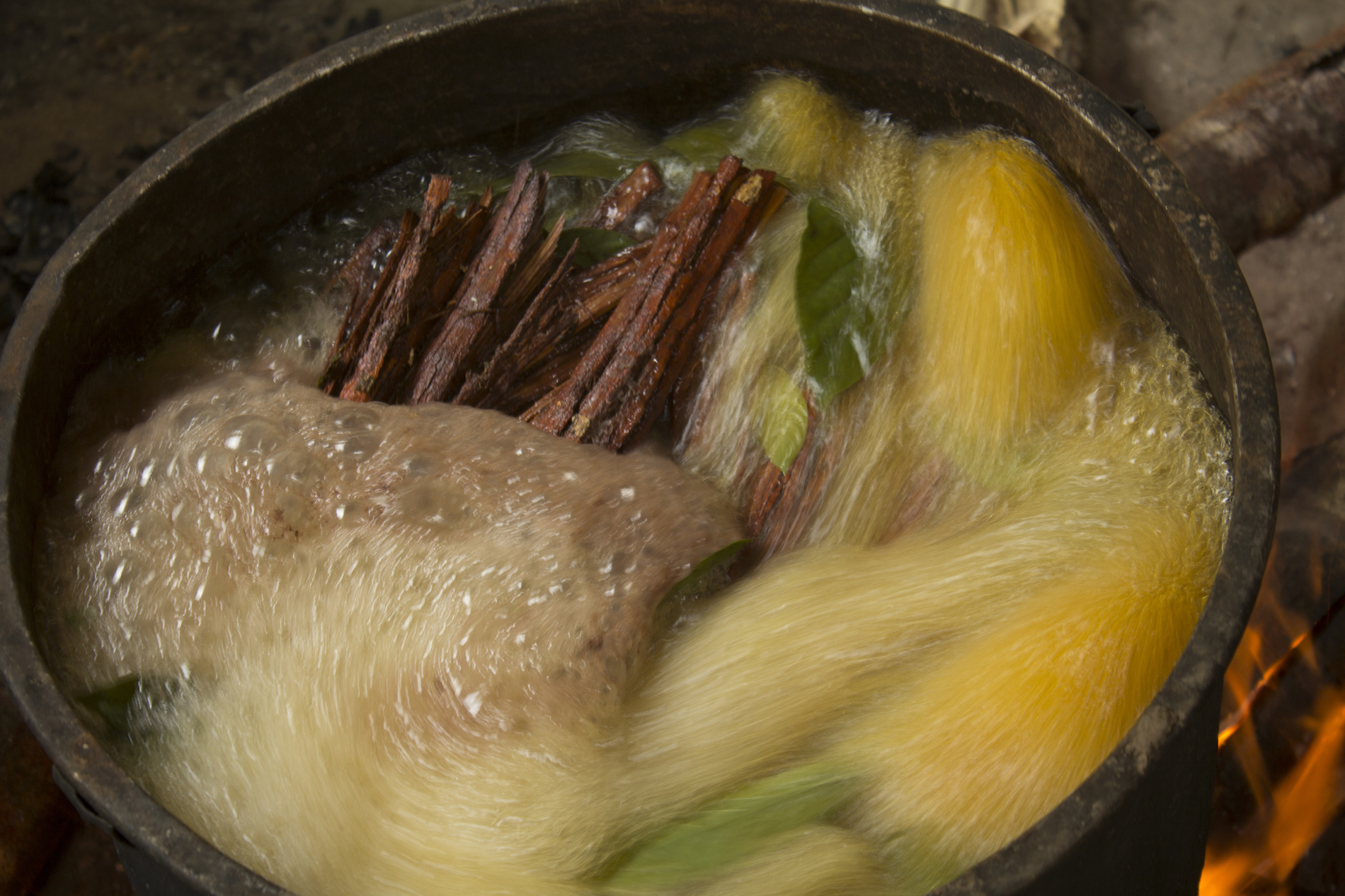 America Is Getting Its First Legal Ayahuasca Church - VICE