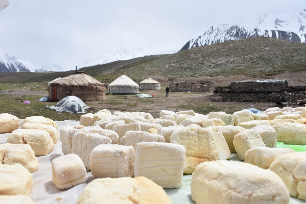 cheese-from-kyrgyz-nomad_28593208863_o