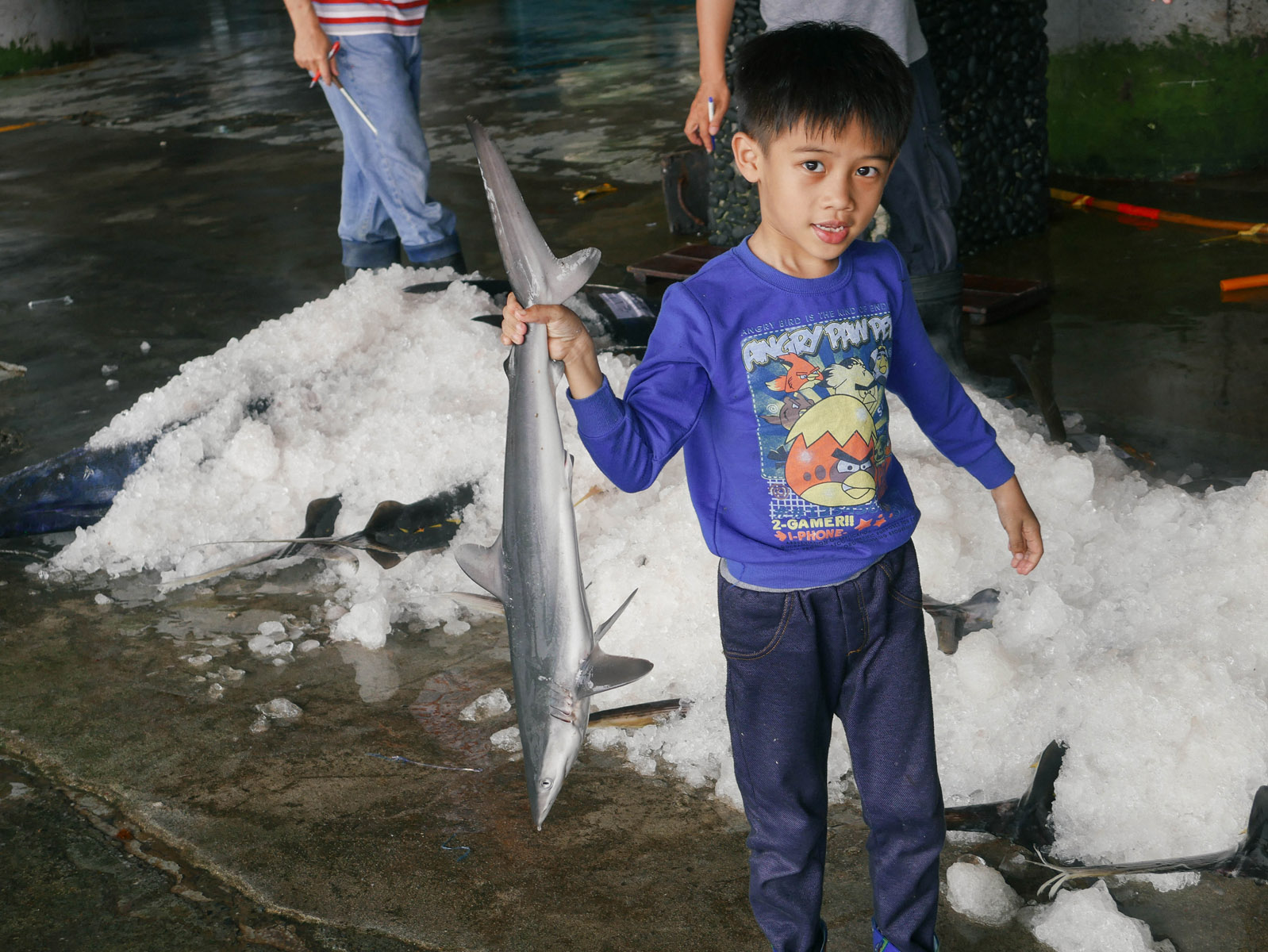 child-playing-with-shark_26125327236_o