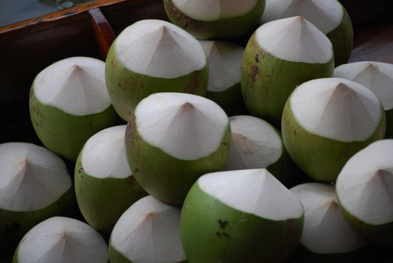 coconut-carnival-london