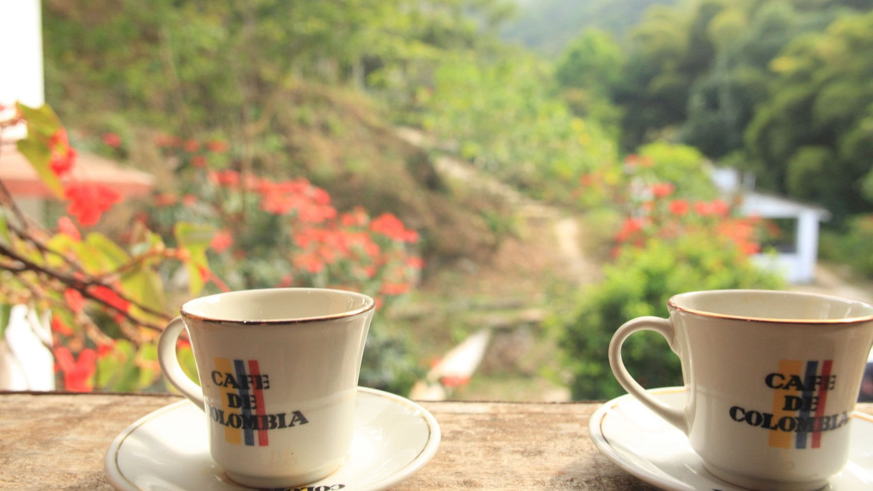 colombiancoffee_IMG_1857