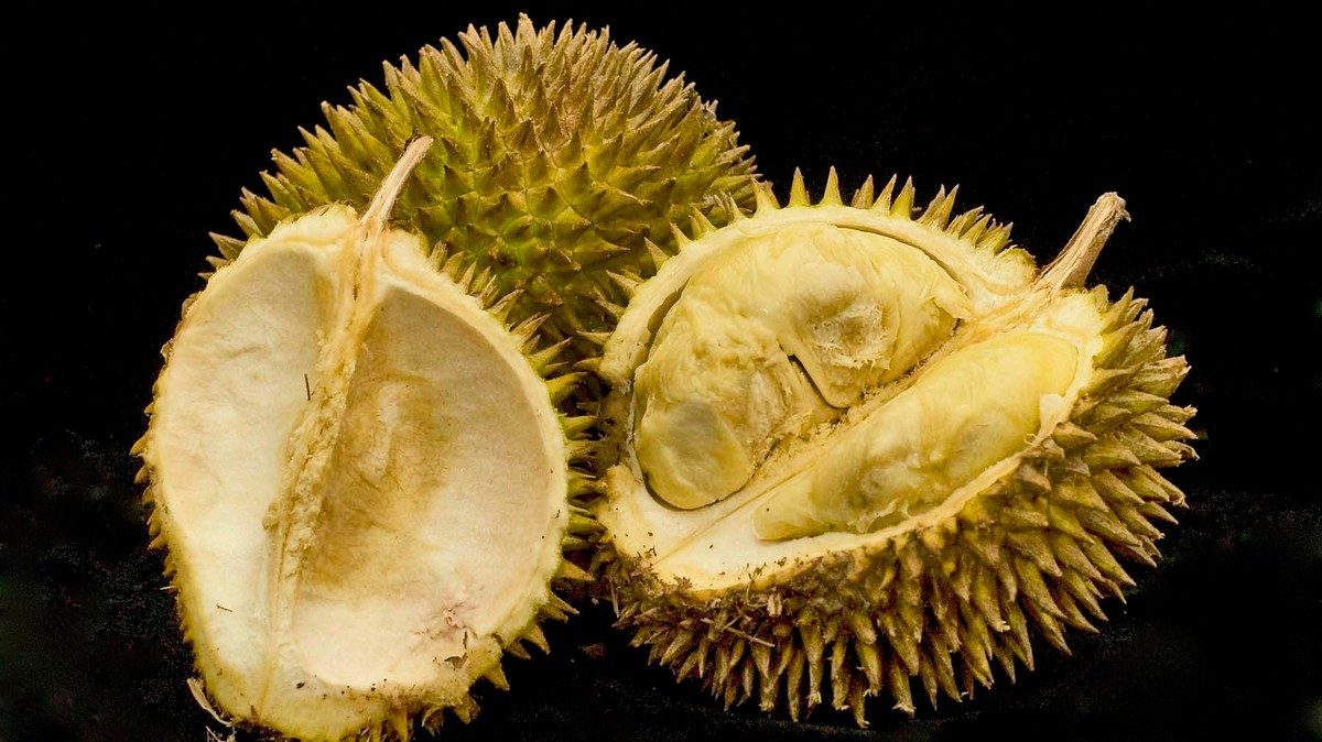 how to use durian flavouring