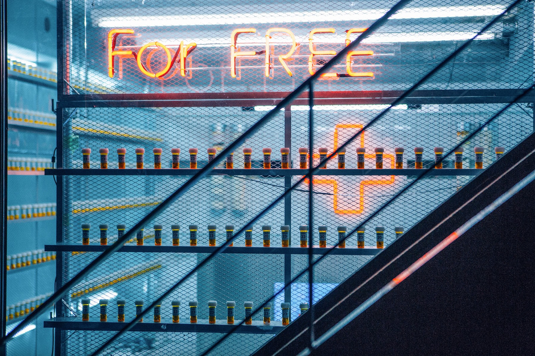 for-free-sign