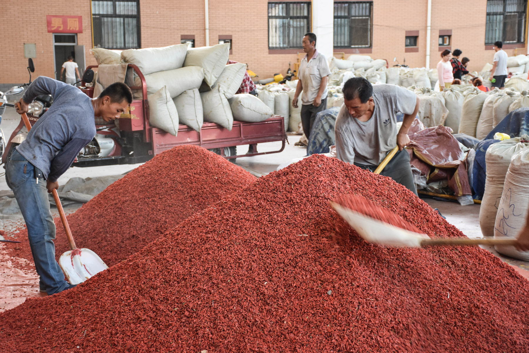 goji-pile-at-goji-wholesale-market_27985980490_o