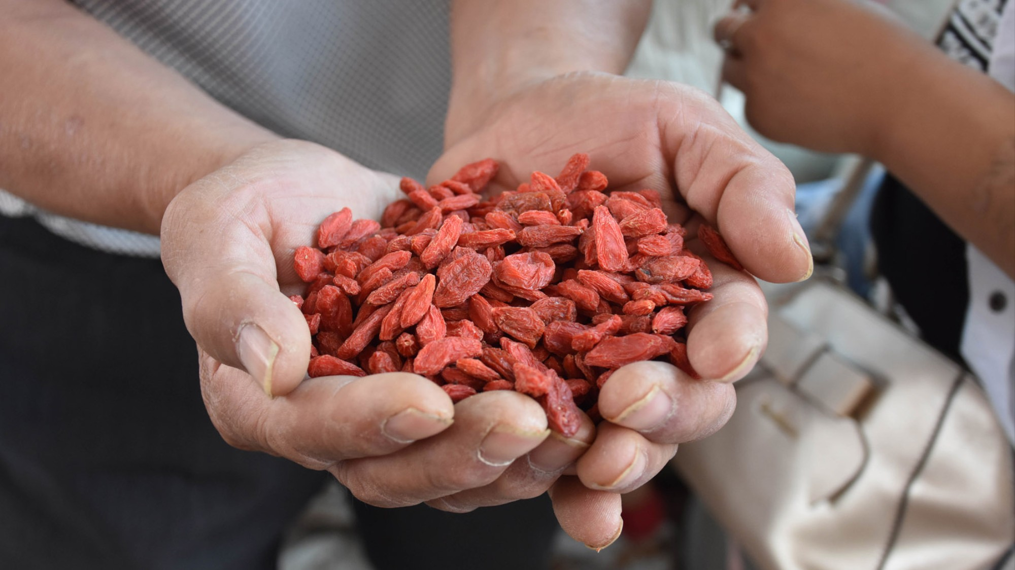 Inside the Goji Berry Capital of China - VICE
