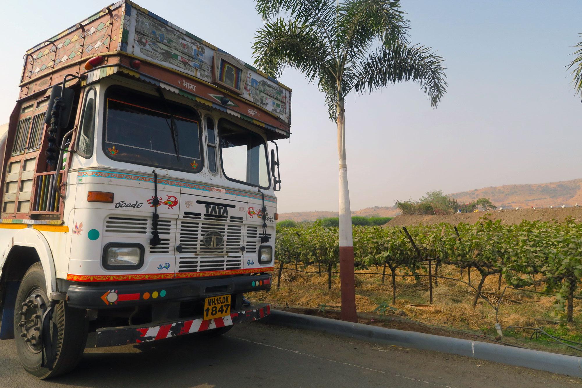 indian-vineyard-tasting