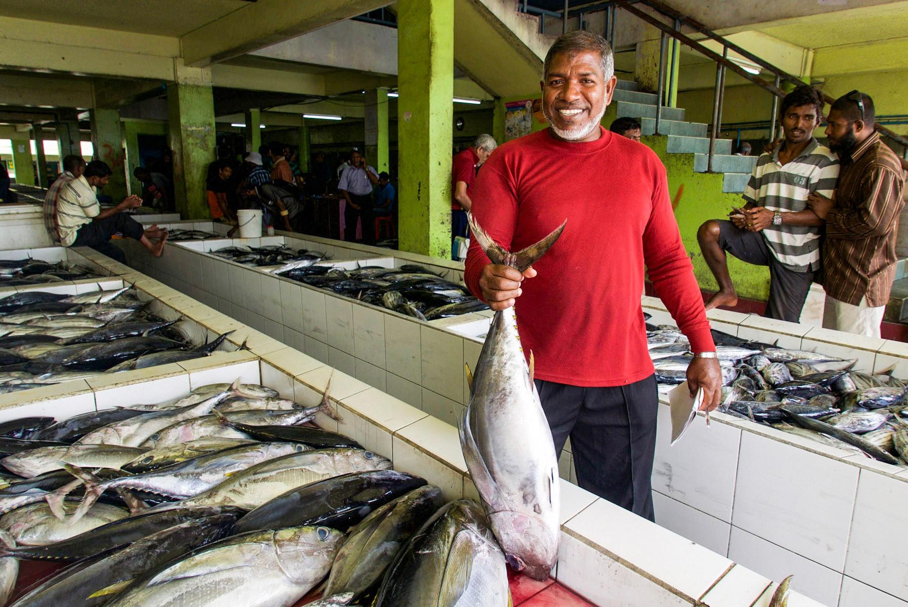 Maldives Tuna Fish