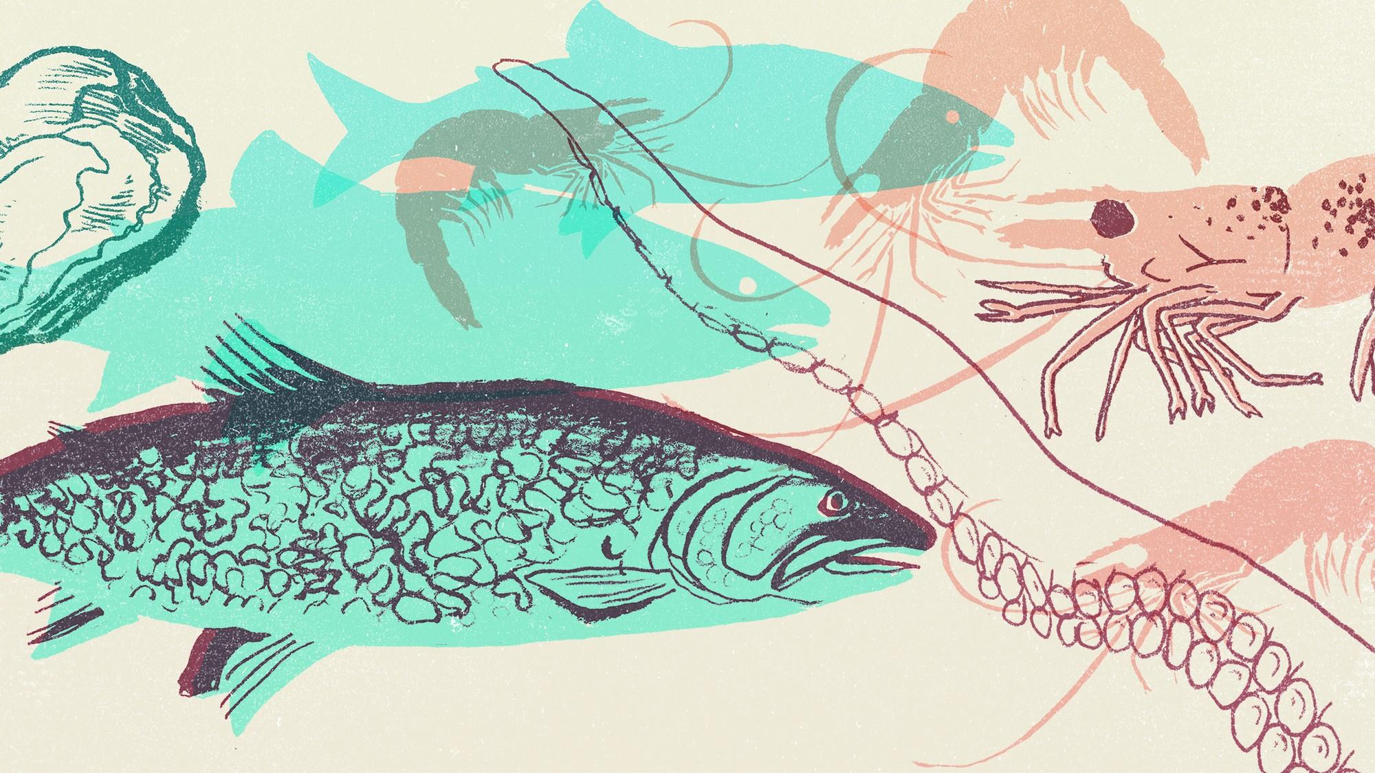 un poisson deux poissons datant Numérologie datant