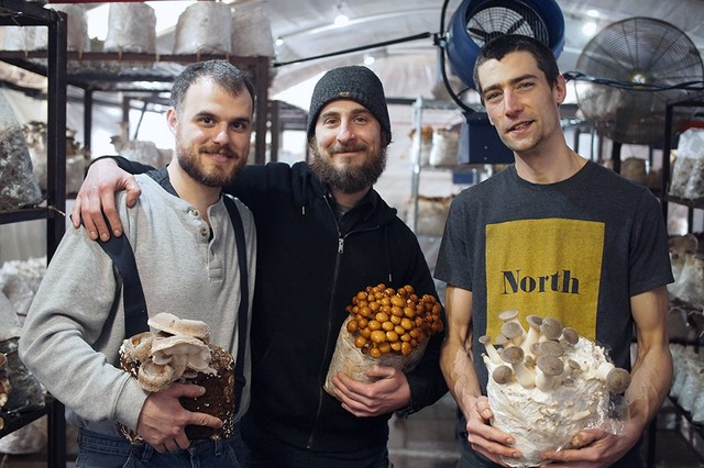 How to Turn an Abandoned Factory into a Thriving Mushroom Farm - VICE