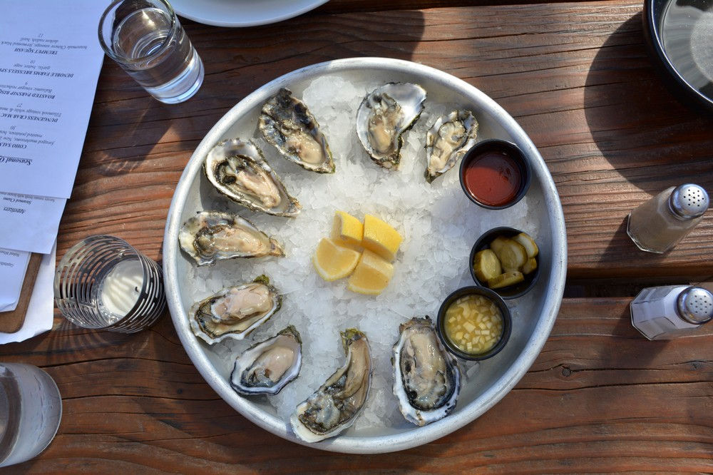 oyster_netarts_pacific-1