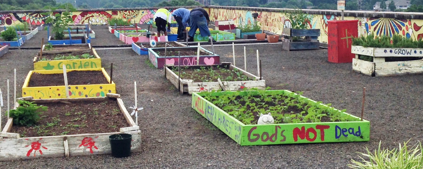 The Metro Atlanta Task Force For The Homeless Maintains A Rooftop Garden Of  80 Colorfully Painted Raised Beds Of Tender Lettuces, Collard Greens, Kale,  ...