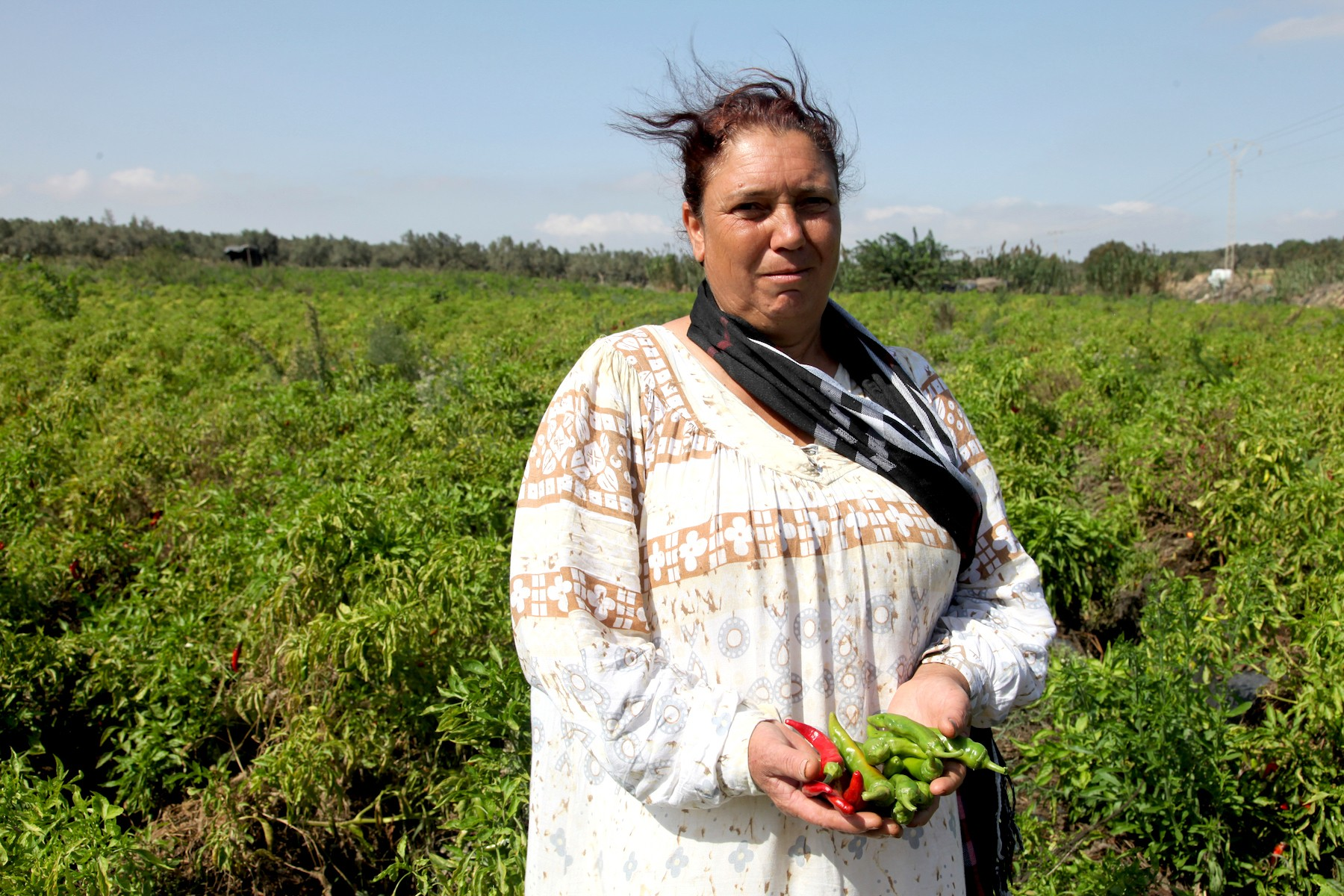 woman-in-field-with-hot-peppers